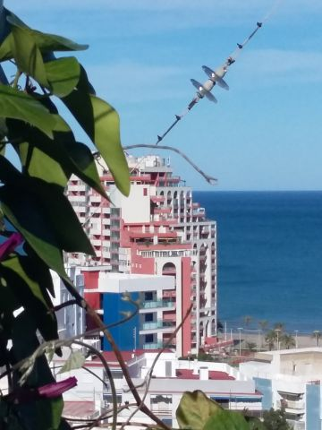 Bed and Breakfast in Cullera - Vacation, holiday rental ad # 67597 Picture #5