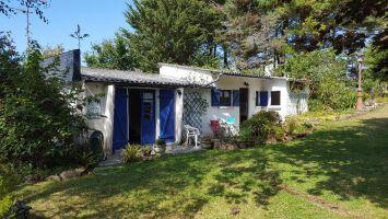 Maison Trebeurden - 3 personnes - location vacances  n°67068