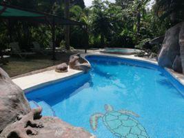Chambre d'hôtes Cabuya - 4 personnes - location vacances  n°67864