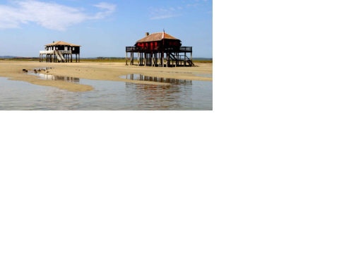 Maison arcachon -