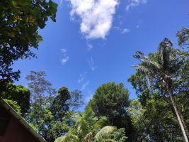 Prachtig Natuur Resort - Natuur Resort   no 68010