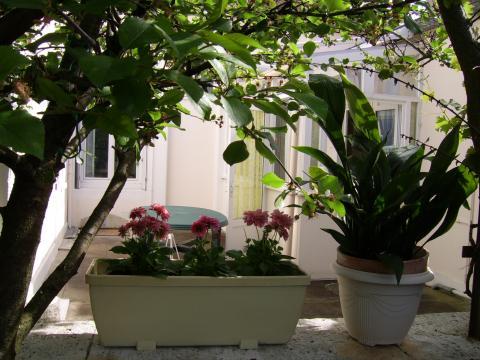 Maison 3 personnes La Rochelle  - location vacances