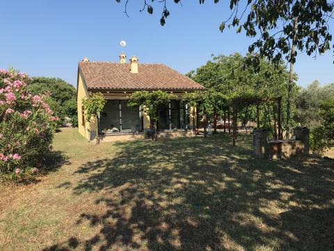 Haus in Marta (viterbo) für  12 •   4 Schlafzimmer