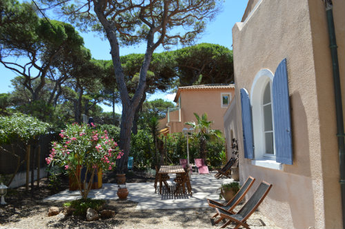 House in La Capte - Hyeres - Vacation, holiday rental ad # 19080 Picture #3