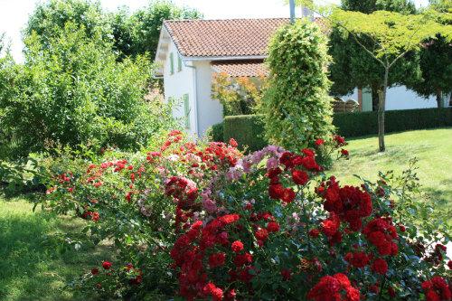Gite Lemouzy - 5 personnes - location vacances  n°19467