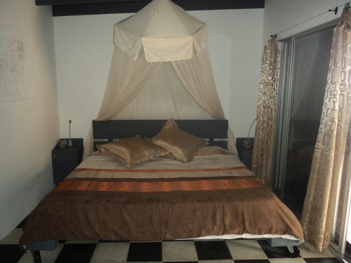 Flat in Philipsburg for rent for  3 people - rental ad #19879