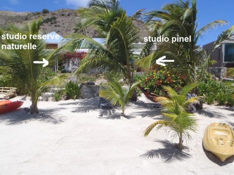 Studio in st martin - Vacation, holiday rental ad # 19904 Picture #4