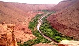 Chambre d'hôtes Ouarzazate - 10 personnes - location vacances  n°19547