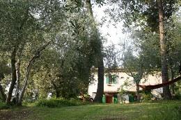 Huis Cevoli - 8 personen - Vakantiewoning  no 19965