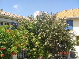 Gite St Yzans De Médoc - 10 personnes - location vacances  n°19995