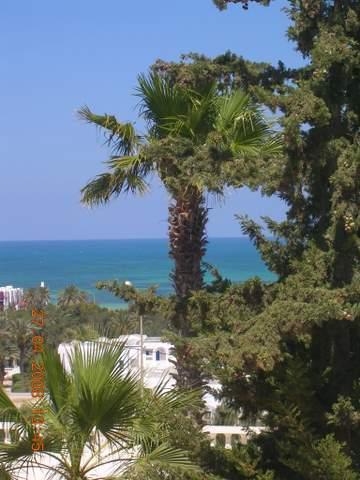 House in Djerba - Vacation, holiday rental ad # 20090 Picture #1