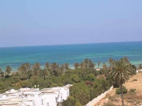 House in Djerba - Vacation, holiday rental ad # 20090 Picture #2