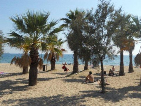 Gite in Fréjus - Vacation, holiday rental ad # 20266 Picture #7