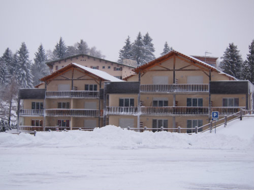 Location gerardmer - Location appartement ski gerardmer  n°20434