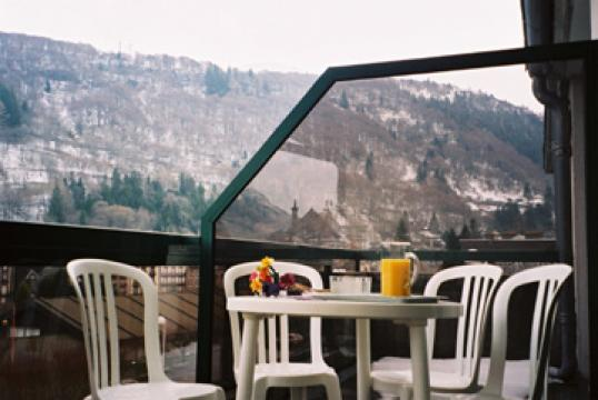 Studio in Mont dore - Vacation, holiday rental ad # 20760 Picture #3