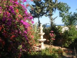 Location Tunisie Vacances, Gite à partir de 105€/semaine  n°20090