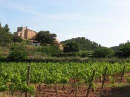 Gite 11 personnes El Pla De Manlleu - location vacances  n°20303