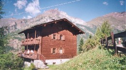 Chalet Valtournanche - 12 people - holiday home  #20313