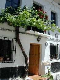 Casa rural Pinos Genil - 4 personas - alquiler n°20547