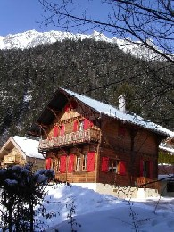 Chalet Chamonix - 12 people - holiday home  #20700