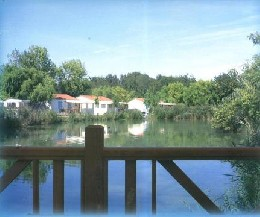 Chalet in St pierre d'oleron for   4 •   with shared pool   #20928