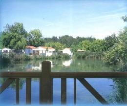 Chalet St Pierre D'oleron - 4 personnes - location vacances  n°20928