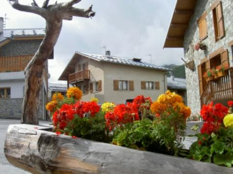 Chalet in Saint martin de belleville - Vacation, holiday rental ad # 21587 Picture #0
