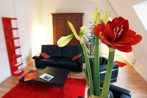 Appartement strasbourg louer pour 5 personnes for Self garage strasbourg
