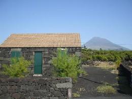 Haus Pico Island - 6 Personen - Ferienwohnung N°21118