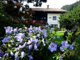 Appartement Millstatt - 7 Personen - Ferienwohnung N°21351