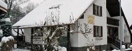 Chalet Jeseník - 10 people - holiday home  #21913