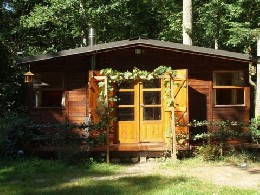 Gite 15 people Arbonne La Foret - holiday home  #21925